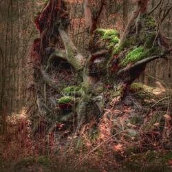 Mythische bosfiguren