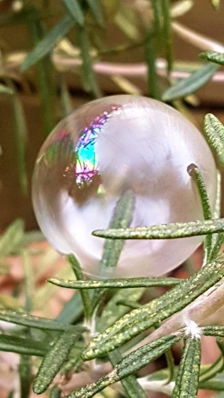 Opvriezende zeepbel -