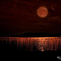 Rode Maan