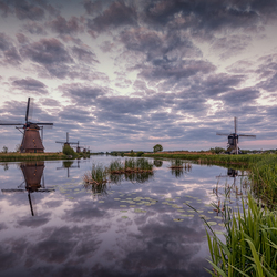 Dutch Reflections