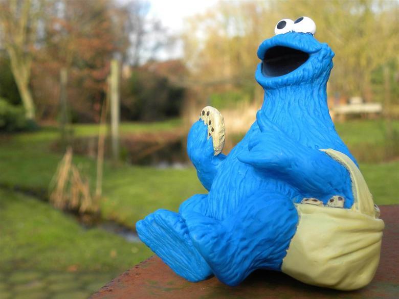 CookieM at home - Dit figuur, waar ik een bijzondere band mee heb, reist met mij. Altijd. En speelt met grote regelmaat een hoofdrol in mijn fotografi