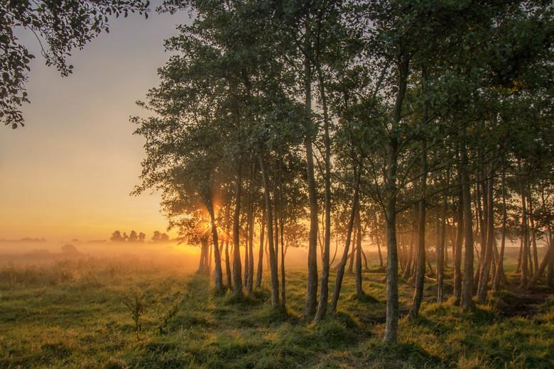 Gulden Dageraad - Op een zonnige zaterdag ochtend..