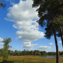 Wolkensstraat boven...