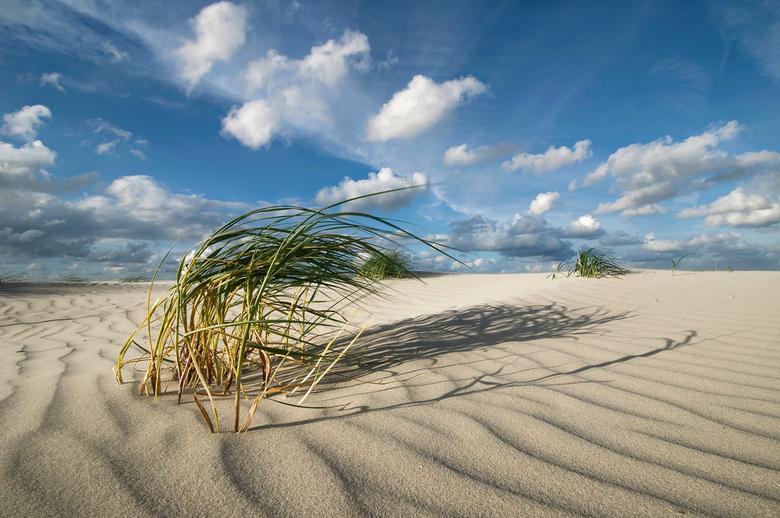 Dutch Desert - Op het oostelijke deel van het strand van Schiermonnikoog, (bijna) weg van menselijke invloeden, is het goed toeven als fotograaf. Door