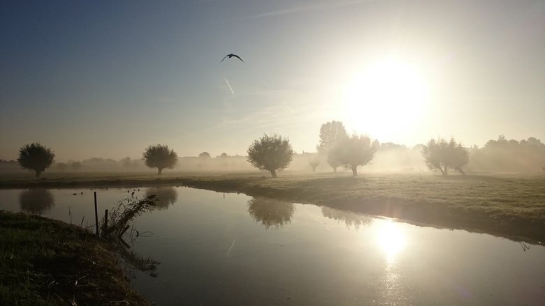 Fietsend genomen foto van zonsopkomst. lll -