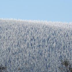 sneeuw in begin oktober