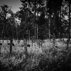 psychiatric cemetery