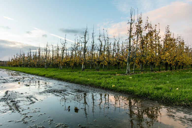 Herfst - Een prachtige zonsondergang op een typische regenachtige herfstdag.