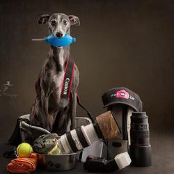 Wat zit er in de fototas van FotoMelle?