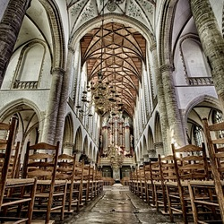 Sint Bavo kerk, Haarlem