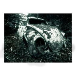 Car Graveyard (3)