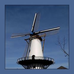 Windlust Westmaas