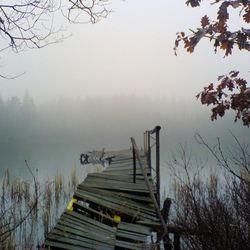 Zweden in de mist