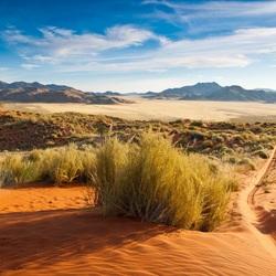 Ondergaande zon in de Namib