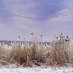 Kruiend ijs - Reeuwijkse Hout (2018)