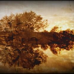 Tussen water en licht.