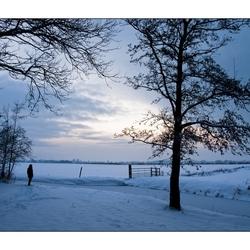 genieten van sneeuw