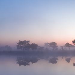 Strabrechtse Heide 210