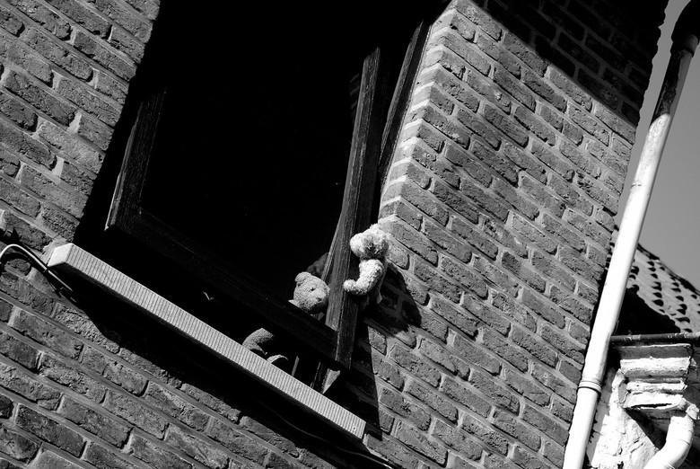Help... - 2 knuffelbeertjes welke proberen te ontsnappen uit 1 van de laatst bewoonde huizen in het Belgische Doel.