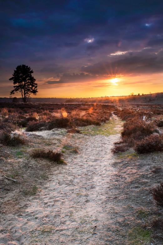 Towards the sun  -