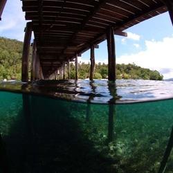 Lijnenspel boven en onderwater