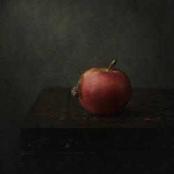 slak met appel