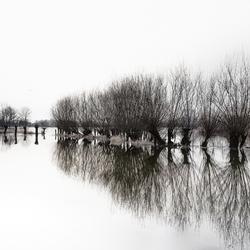 Uiterwaarden bij Fortmond onder water