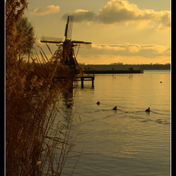 Hollands glorie...5