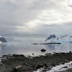 Antarctica, Danco Island