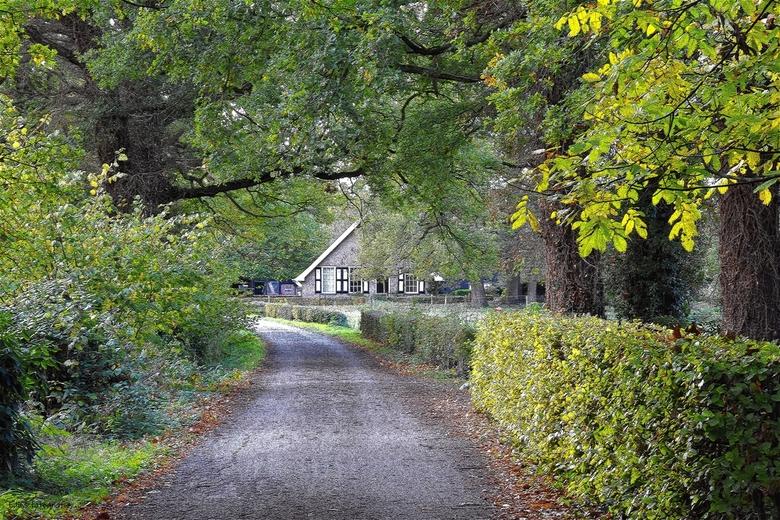 DSC_7219  Landgoed Twickel.