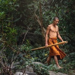 Monk living in the jungle of thailand.