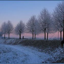blauwe ochtend