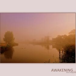 Awakening...