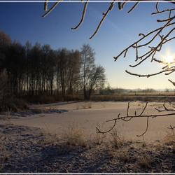 Bargerveen in de Winter