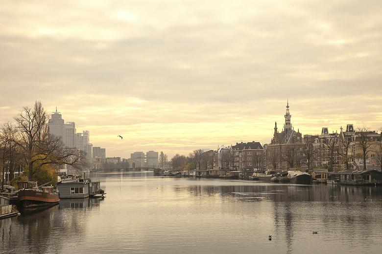 Early Amstel -