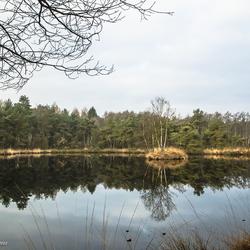 _HTI4649 Halve Maan (rechte Heide)Riel/Goirle.