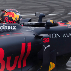 Close up RB8 Max Verstappen