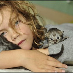 Katten liefde, of andersom...