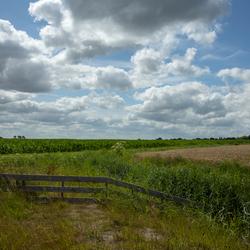 gronings landschap