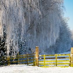 Winter op z'n best!