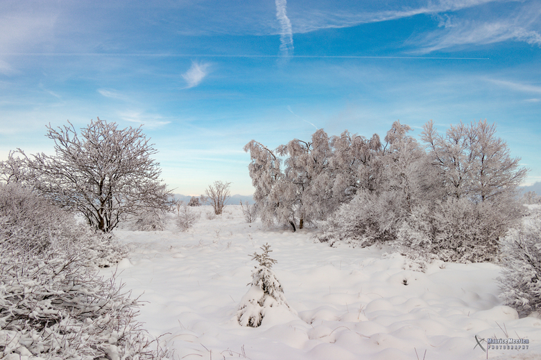Blauwe lucht versus witte sneeuw....