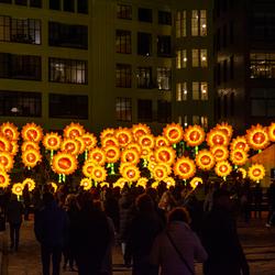 GLOW 2019 - Project 21 Zonnebloemen voor van Gogh