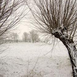 Lekker.....sneeuw.