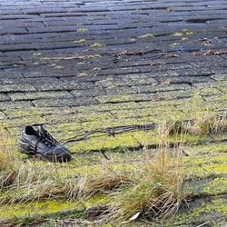 Verloren schoen