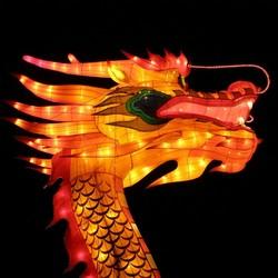 China Lights nr.18 Emmen