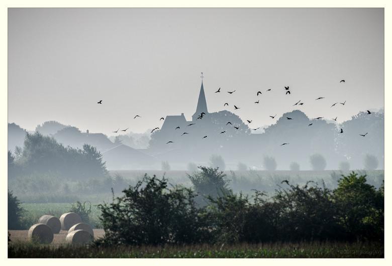 Ochtendnevel - Zicht op Persingen in de Ooijpolder vanaf de bandijk. Een landschapsfoto geschoten met een 300mm objectief.