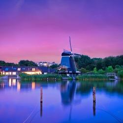 De Eenhoorn te Haarlem True Colors