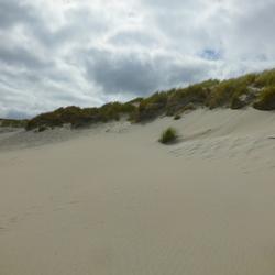 Zand en Duinen