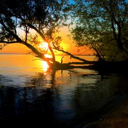 zonsopgang IJmeer