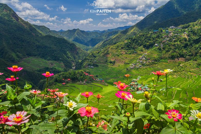 Batad Rice Terraces - De rijstterrassen van Batad in de vorm van een amfitheater. Batad ligt in het Noorden van Luzon (Filipijnen) en staat op de UNES